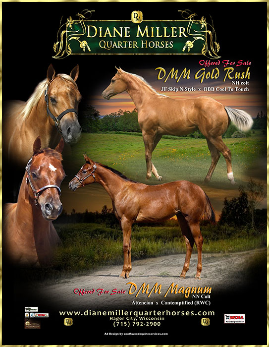 Diane Miller Quarter Horses - Congratulations to New Owners